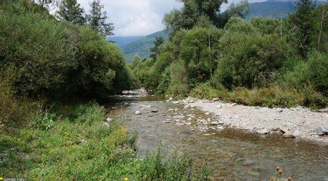 Panoràmica del riu Rigard a Planoles, Ripollès.