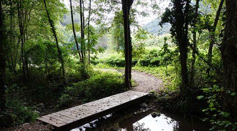Pont a la Riera de Vallforners a Cànoves.