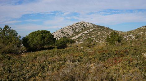 Paisatge del massís del Garraf al Parc del Garraf.