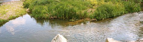 Aiguabarreig del Congost a Montornès del Vallès.