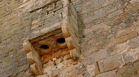 Cagadora al castell de Concabella.