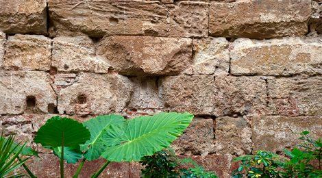 Llenç de muralla a la Porta de Mar.