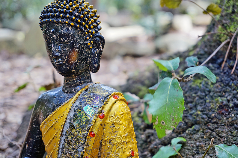 estàtua de Buda. Laberint de Cabrils