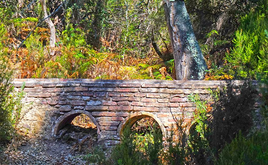 Petit aqüeducte de maó al mig del bosc. Itinerari de l'aigua a Can Vilallonga