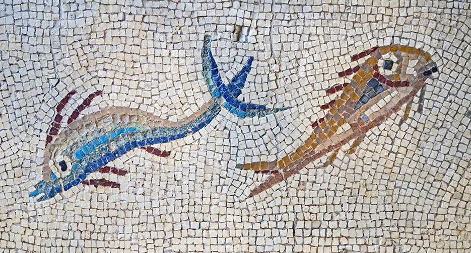 Mosaic amb peixos, en un brollador. Mosaics del Museu Arqueològic de Tarragona