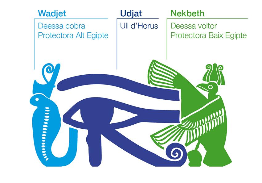 Barraquer. Ull d'Horus. Logotip