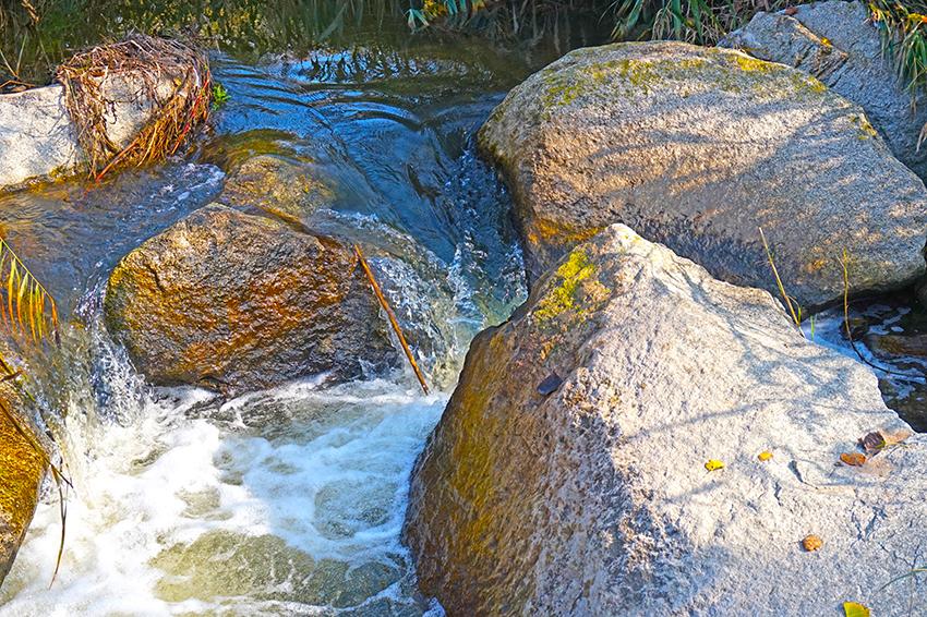 L'aigua salva petits desnivells entre els rocs. Itinerari pel Mogent. Vilanova del Vallès. Vallès Oriental