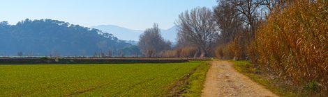 Mogent. Vilanova del Vallès. Vallès Oriental