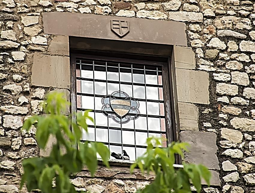 Vitrall amb l'escut dels Despapiol en una finestra del castell de Papiol. Baix Llobregat.