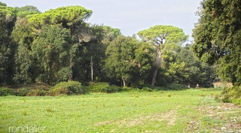 Parc del Corredor. Dosrius. Maresme