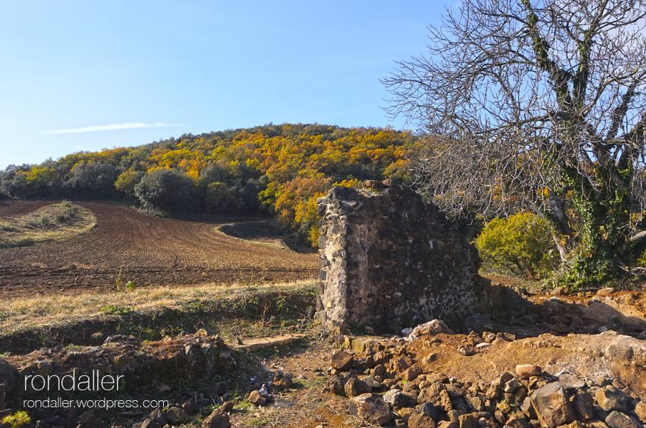Excursió a Sant Llorenç d'Adri. Volcà de Puig d'Adri.