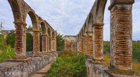 Badalona, Barcelonès, Ca l'Alemany, ruïnes