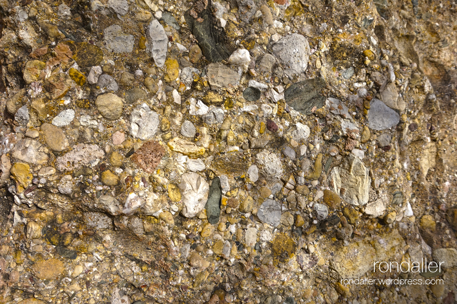 Monument a Jaume Almera a Vilassar de Mar (Maresme). Detall de la composició de la roca.