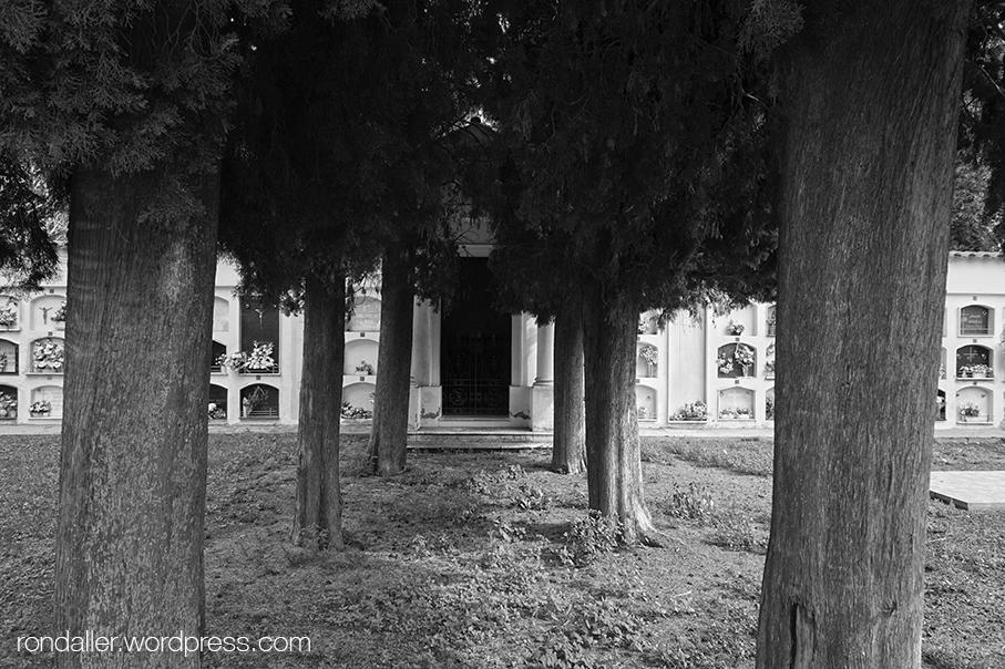 Cementiri de Grions a Sant Feliu de Buixalleu, La Selva.