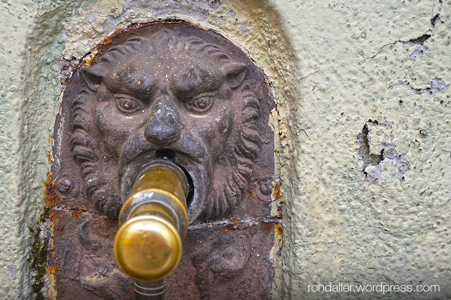 Broc amb cara de lleó de la font de Sant Vicenç de Torelló.
