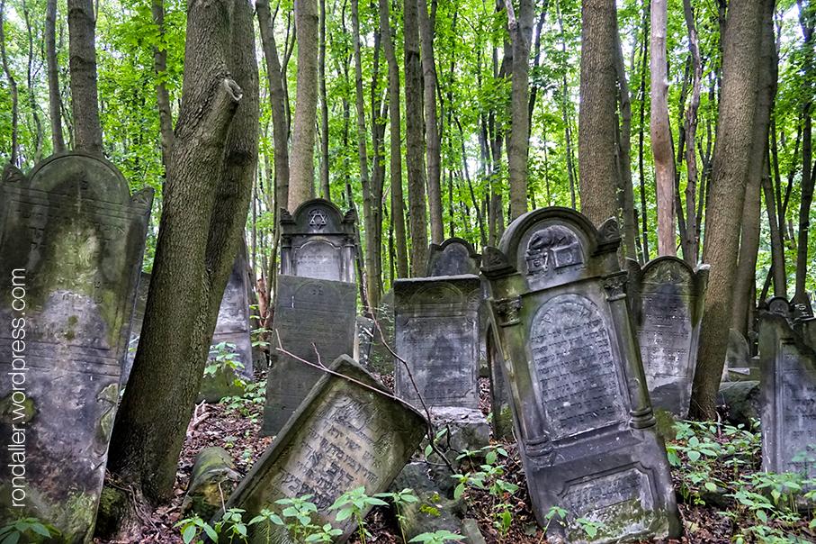 Cementiri jueu de Varsòvia. Diverses tombes entre els arbres.