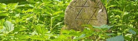 La mort és el principi de la immortalitat (1)