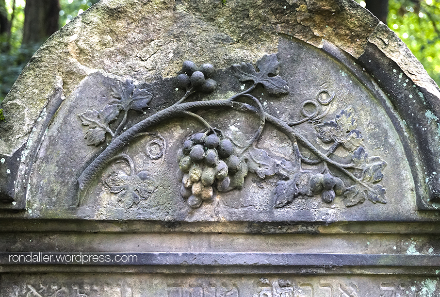 Cementiri jueu de Varsòvia. Relleu d'una branca amb raïm.