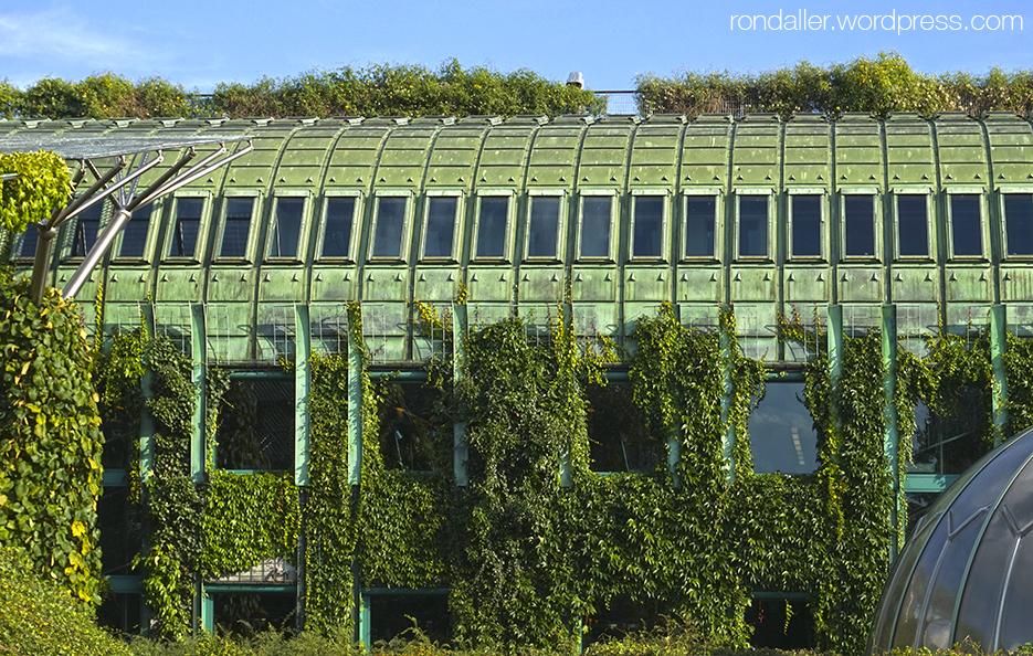 Itinerari per Varsòvia. La vegetació cobreix gran part de l'avantguardista  Biblioteca Universitària.