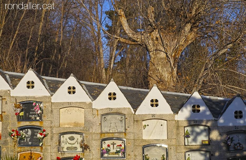 Cementiri modernista de Puigcerdà. Nínxols disposats de forma esgraonada, amb la vegetació al darrere.