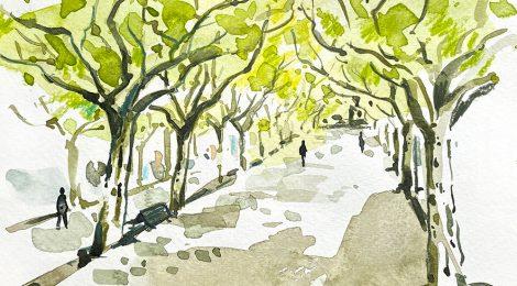 Aquarel·la del passeig Joan Brudieu, amb les tres fileres de plataners que li donen ombra.