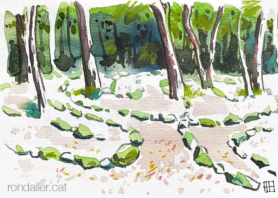Aquarel·la del laberint fet amb pedres al bosc de Cabrils, al Maresme.