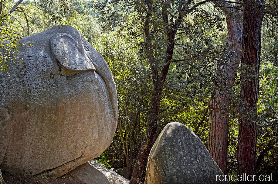 Roc esculpit amb la figura d'un elefant al Bosc Màgic de la Roca del Vallès.