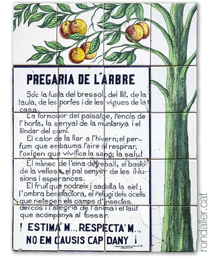Poema anònim de la Pregària de l'Arbre a la plaça de Sant Sebastià de Moià.