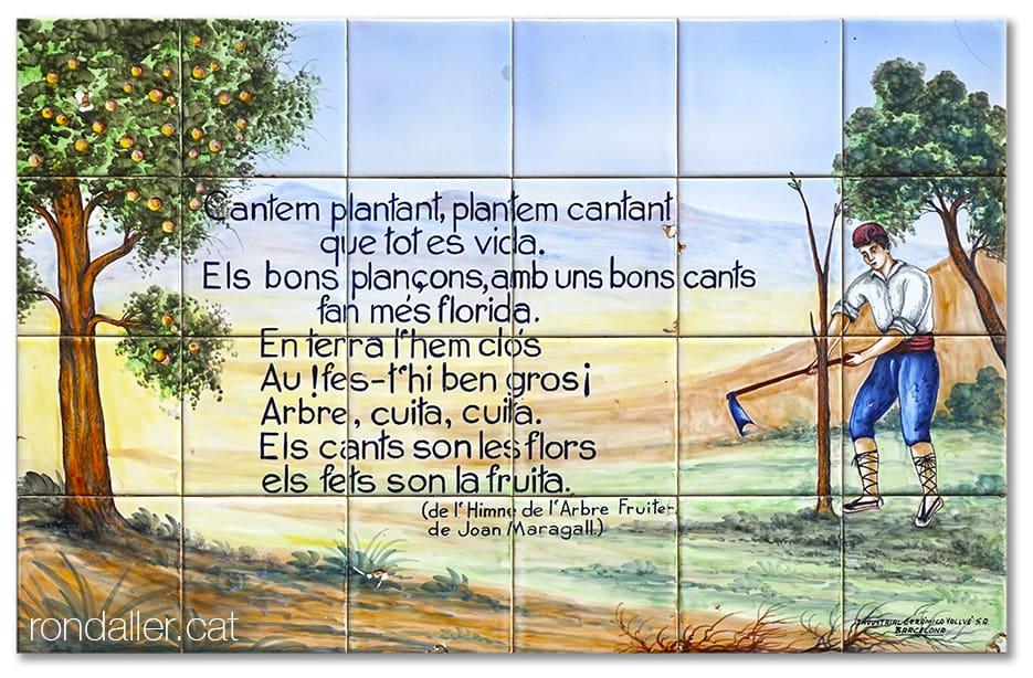 Estrofa del poema Himne de l'Arbre Fruiter de Joan Maragall a la plaça de Sant Sebastià de Moià.